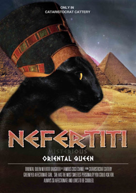 Oriental cat Nefertiti movie poster Cataristocrat