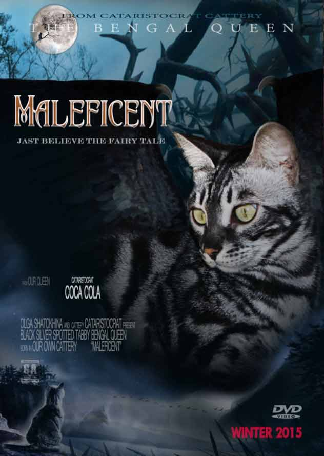 Malificent Bengal cat from Bengal cattery Cataristocrat, Movie-Poster