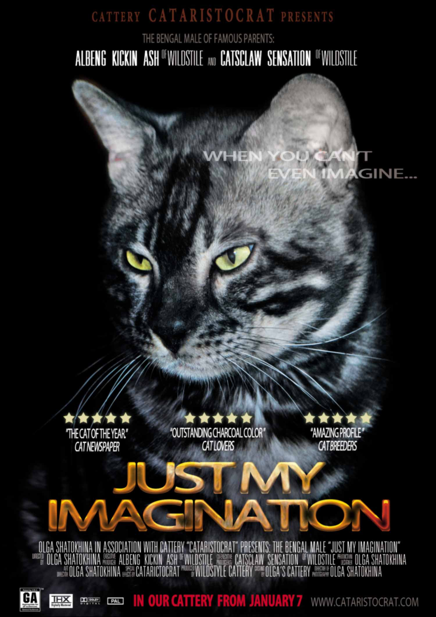 Bengal cat Just My Imagination movie Poster CATARISTOCRAT
