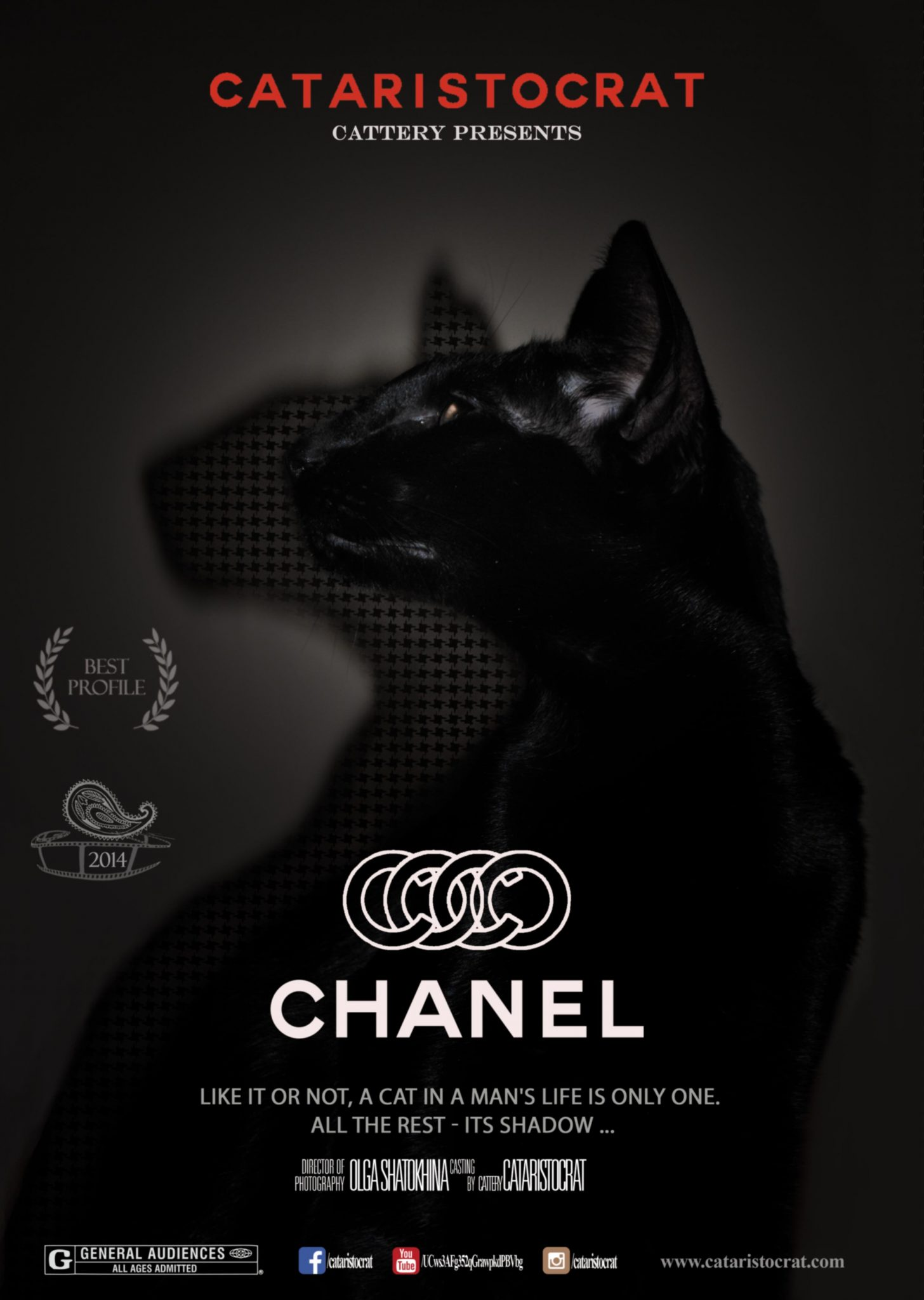 Chanel Oriental cat from Oriental cattery Cataristocrat, Movie-Poster